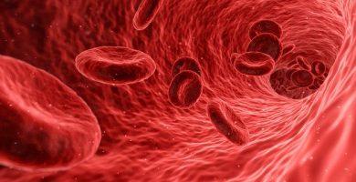 Impulsar la inmunidad a través de una rutina diaria saludable – SEGUNDA PARTE